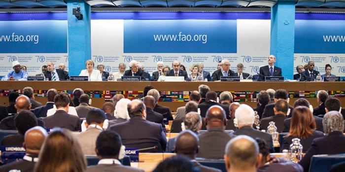 """La FAO distingue a varios países de la región por """"dar enormes pasos hacia la erradicación del hambre"""""""