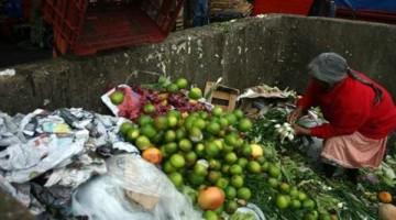El informe de la FAO asegura que la mayor pérdida de alimentos en AL y el Caribe corresponde a frutas y hortalizas, seguidas por raíces y tubérculos. En la imagen, una pepenadora en la Central de Abastos de la CDMX