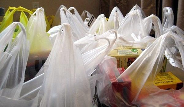 Chile: científicos crearán biorreactor para degradar bolsas plásticas