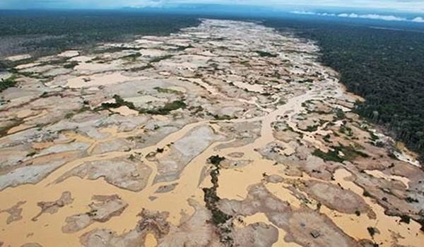 Aumentaron áreas deforestadas en regiones amazónicas