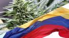 Colombia se convierte en el cuarto país de Latinoamérica en legalizar la marihuana medicinal