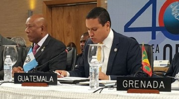 Ministro-del-Minex-OEA