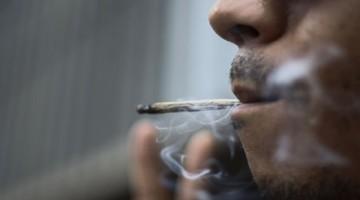 ganja-marijuana