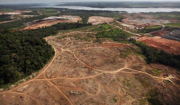 La-deforestacion-amazonica-en-Brasil-crece-un-467