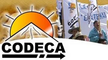 Asociacion-CODECA-GUATEMALA-Google-Chrome-24022015-104903-a.m.1